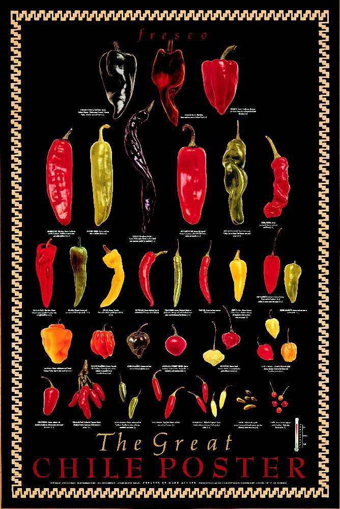 Fresh Chile Peppers - Chile Fresco Poster