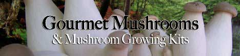 Click Here for Gourmet Mushroom Products