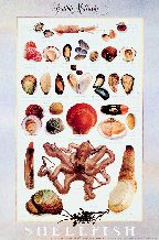 Shellfish - Edible Mollusks